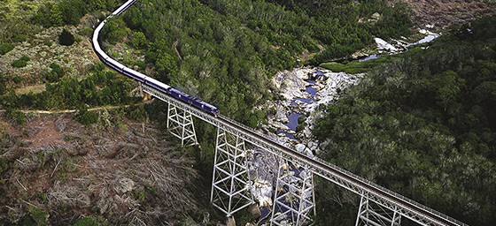 Take an unforgettable journey on the Blue Train