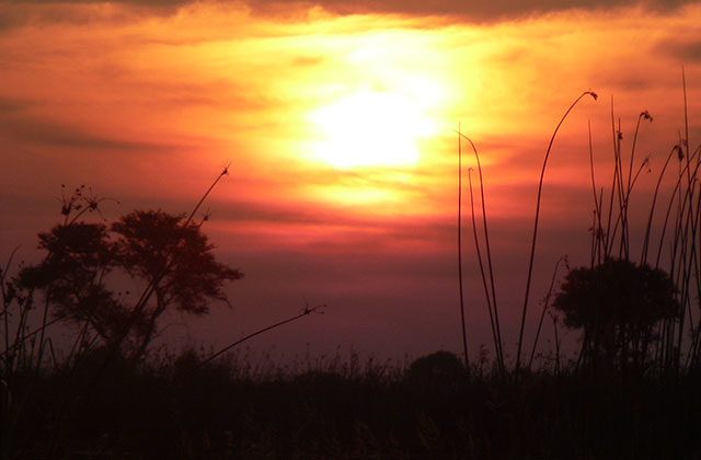 Sunset over the Chobe National Park, Botswana | by Flight Centre's Kylie Schreiber