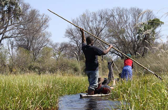 Okavango Delta, Botswana |by Flight Centre's Stephen Bullock