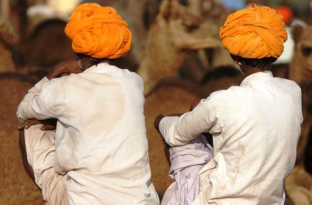 Camel Owners, India