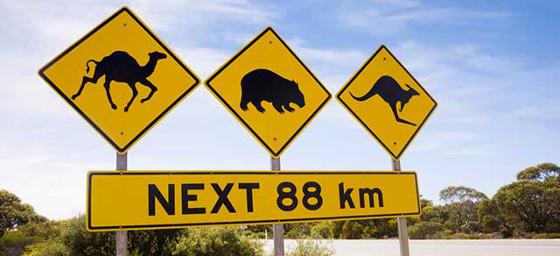 Australia: Road Sign