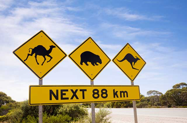 Typical Australian Road Sign