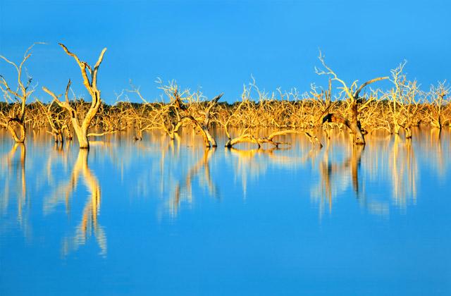 Lake Menindee, New South Wales