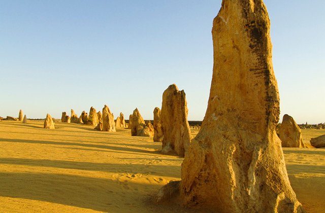 The Pinnacles Desert, Nambung National Park, Western Australia
