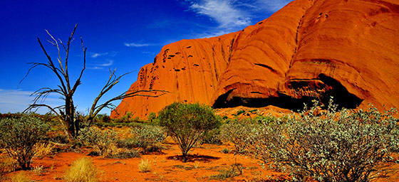 Why book your Uluru holiday with us?
