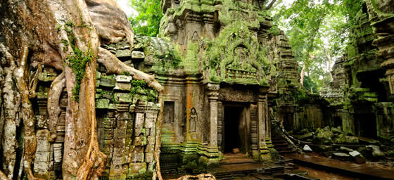 Cambodia: Ta Prohm Temple