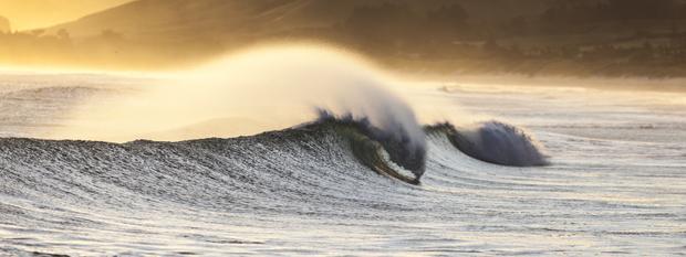 Surf Dunedin New Zealand