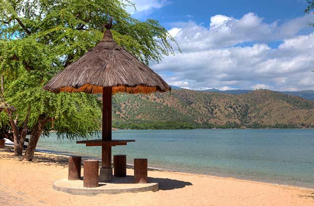 Traditional Beach Umbrella, Areia Branca Beach