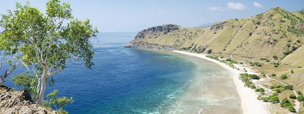 East Timor Travel Guide Amp Sightseeing Flight Centre