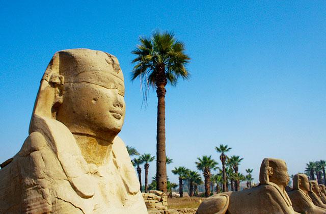Sphinx , Luxor