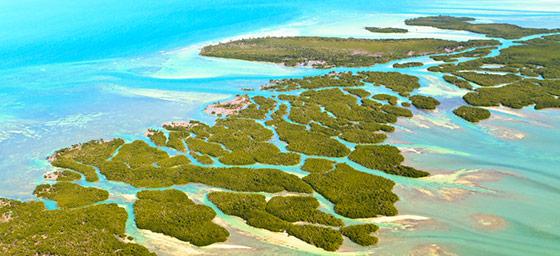 Florida: Florida Keys