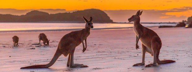 Queensland Experiences - Walking With Spirits In Queensland