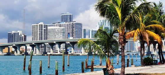 Miami: Skyline