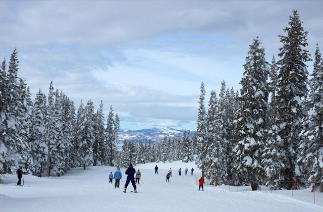 Skiing, Steamboat Ski Resort, Colorado, United States