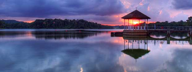 Singapore points of interest | Lower Peirce Reservoir