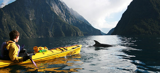 South Island: Milford Sound
