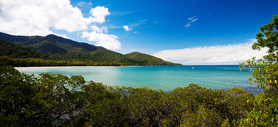 Tropical North Queensland: Cape Tribulation