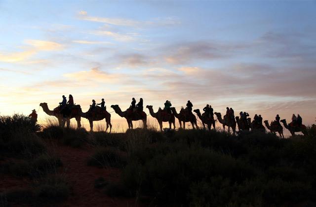 Sunset Camel Tour | by Flight Centre's Jade Hateley
