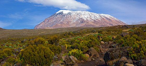 Africa: Mount Kilimanjaro