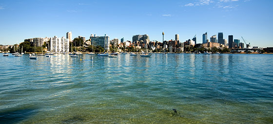 Golf: Rose Bay in Sydney