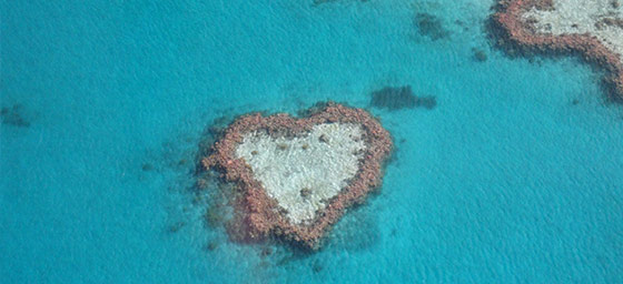 Island Honeymoons: Heart Reef