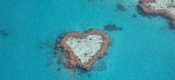 Island Honeymoons: Heart Reef