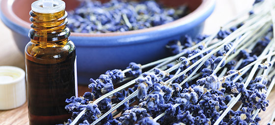 Spa Honeymoons: Lavendar Aromatherapy