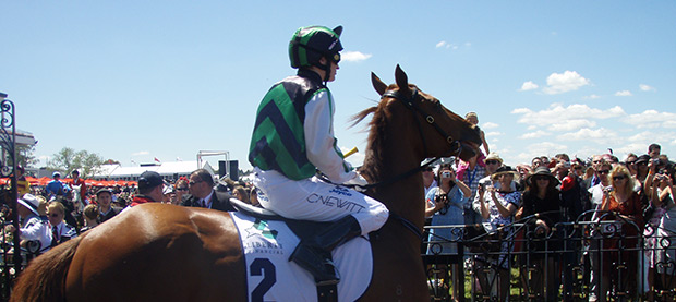Thousands Flock to Flemington