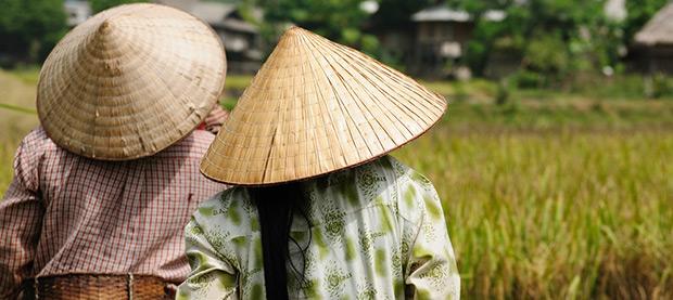 Share Your Skills in Vietnam