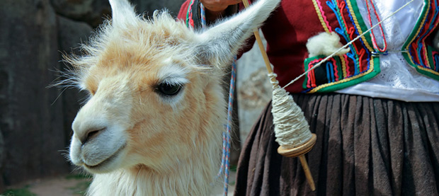 Meet the Locals in Peru