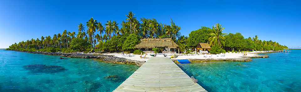 Fiji holiday packages - palm trees, turquoise blue water