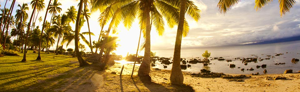 Fiji Holiday Packages - palm trees, beachside at sunset