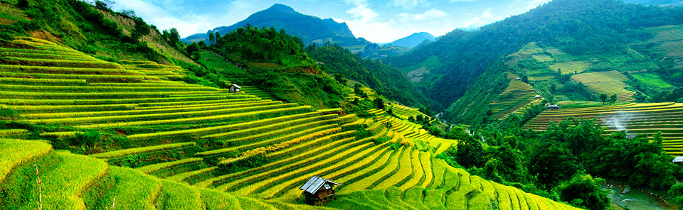 cheap vietnam holidays save on vietnam packages flight centre