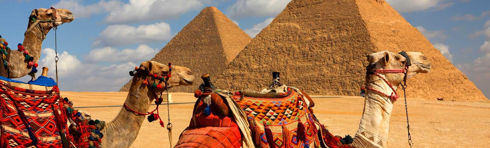 Let S Tour Egypt