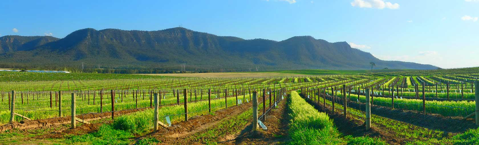 Hunter Valley Accommodation & Packages | Travel Associates